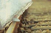 odwzorowanie - ślub